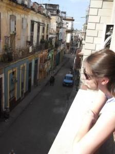 lauren street